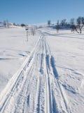Ski- und Schneerollerbahnen im Winter gestalten landschaftlich stockbilder