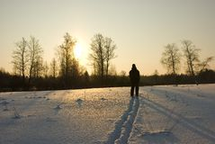 Ski walk. In the morning, a frost, sunrise Stock Photography