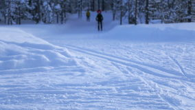 Ski Walk in the Winter Forest. Winter evening. Skiers walk in the woods. Light snow is sparkling in the rays of the setting sun stock video footage