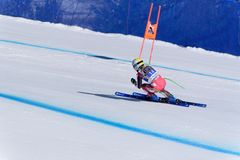 SKI-WORAUT Tamara Tippler participa en las señoras cuesta abajo corre para la raza LD-FINALS-DISIPLINA-SEXO-PRUEBA de Ladie Downh imagen de archivo