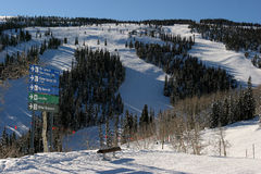 Skiant dans Aspen, le Colorado Image libre de droits