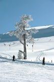 Skiaufzug in den bolu (Truthahn) Bergen Lizenzfreies Stockbild