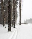 Skibahn Lizenzfreies Stockbild