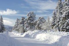 Skibahnen in Schweden Lizenzfreie Stockfotografie