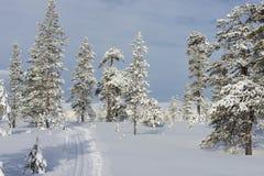 Skibahnen in Schweden Lizenzfreies Stockfoto