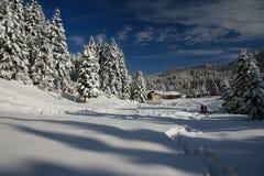Skicentrum van Pertouli, Trikala, Griekenland Stock Fotografie