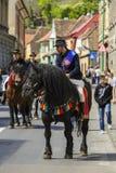 Skicklig ryttare på svart dray-häst Royaltyfri Foto