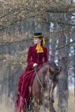 skicklig ryttarinna Royaltyfri Fotografi