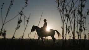 Skicklig ryttarinnaridning på deras häst över en ängsolnedgång silhouette långsam rörelse Slapp fokus stock video
