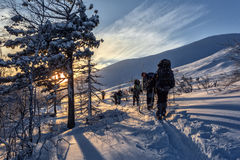 Skidåkare som går ner lutningen på solnedgången Royaltyfri Foto