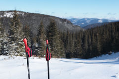 Skida poler mot snowlutning Arkivbilder
