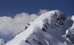 skida toppmötet Fotografering för Bildbyråer