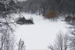 Skida trailen Arkivfoton