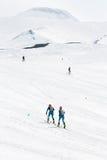 Skidar bergsbestigareklättring som den Avacha vulkan skidar på Team Race skidar bergsbestigning på Kamchatka Arkivfoton