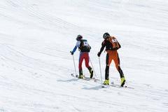 Skidar bergsbestigning: laget skidar bergsbestigaren som löneförhöjningen till berget skidar på Royaltyfri Bild