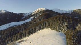 Skidar det flyg- flyget för den härliga vintern över bergskedjalandskapaffärsföretaget som fotvandrar trekking, semesterloppet lager videofilmer