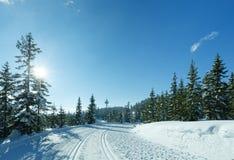 Skidar det soliga berglandskapet för vintern med körningen. Royaltyfri Foto