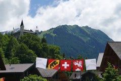 Skidar fält i sommartid i Gstaad arkivbild