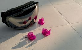 Skidar goggels med blommasammanställning royaltyfria bilder