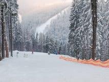 Skidar lutningen bland prydlig skog skidar in semesterorten i Carpathians royaltyfri bild