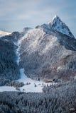 Skidar lutningen på foten av bergen i vinter Arkivbild