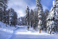 Skidar semesterorten Krasnaya Polyana SOCHI Arkivfoto