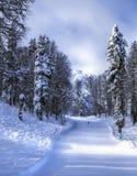 Skidar semesterorten Krasnaya Polyana SOCHI Arkivbild