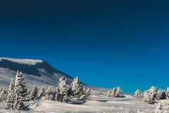 Skidar semesterorten Sheregesh, det Tashtagol området, den Kemerovo regionen, Ryssland Arkivfoton