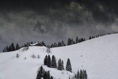 Skidar slopein bergen Arkivbild