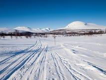 Skidar spår i nordiskt vinterlandskap Arkivbilder
