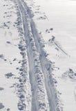 Skidar spår i ny snö Arkivbild