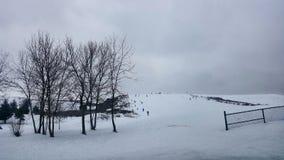 Skidar spela för ungar för kulle tobogganing Fotografering för Bildbyråer