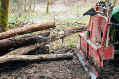 Skidding timber. Tractor is skidding cut trees out of the forest Stock Image
