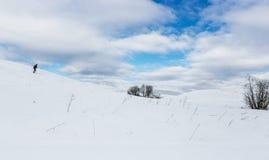Skidåkarefotvandraren går sluttande i jungfrulig snö för skog Vinter som fotvandrar begrepp Många ställe för din text Royaltyfri Fotografi