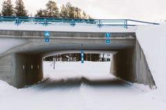 Skidoo-Weg Lizenzfreies Stockbild