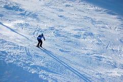 skier Royaltyfria Foton