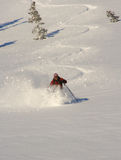 Skier. Having another deep powder day in utah's backcountry Stock Photos