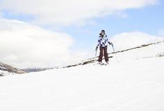 skier Imagens de Stock