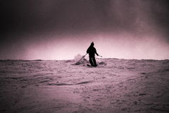 skier Immagine Stock