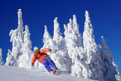 Skier in beautiful winter. Skier  skiing downhill  in high mountain Stock Photos