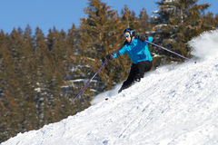Skier carving in deep powder snow Stock Images