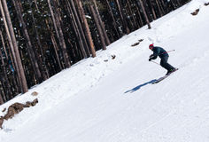 Skier carving down from steep slope. In forest Stock Photography
