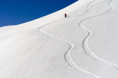 Skier in the deep powder snow Stock Images