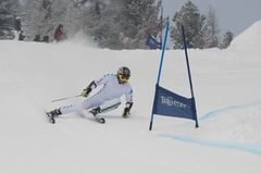 Skier in Giant Slalom Test Stock Photos