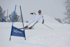 Skier in Giant Slalom Test Stock Image
