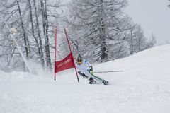 Skier in Giant Slalom Test Stock Photo