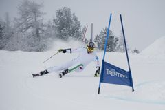 Skier in Giant Slalom Test Royalty Free Stock Image