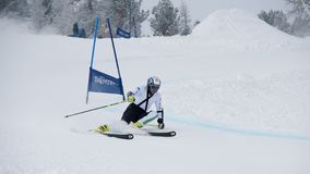 Skier in Giant Slalom Test royalty free stock photo