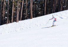 Skier going down on slope. Beautiful skier in white blazer going down on slope in forest. Sarikamis. Turkey Royalty Free Stock Photos