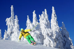 Skier in high mountains. Skier  skiing in fresh snow  against sun Royalty Free Stock Photography